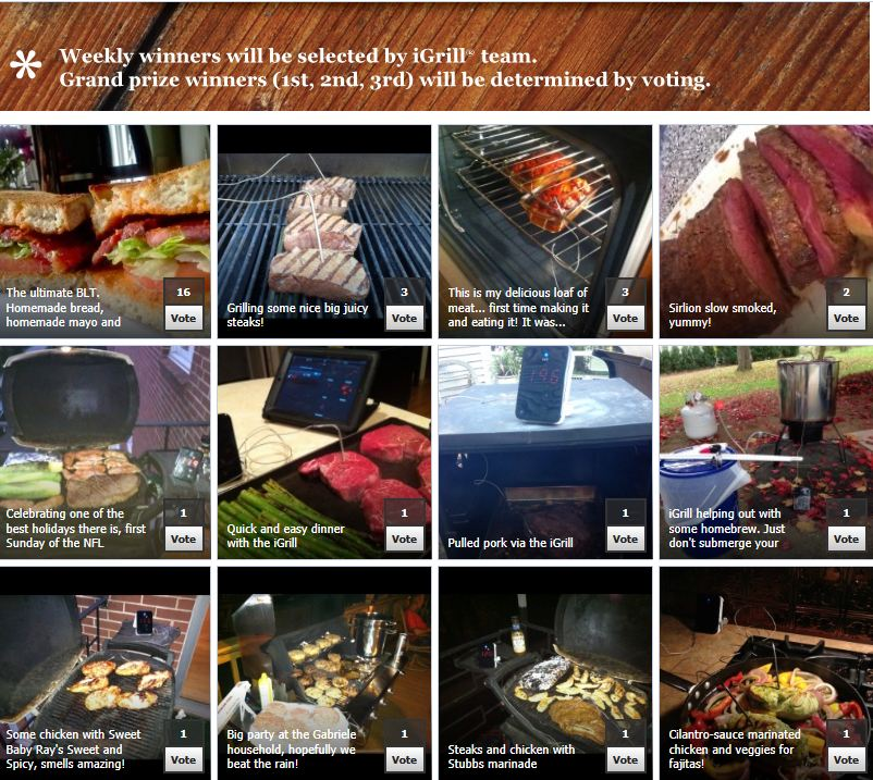 Vote iGrill Wireless Cooking Thermometer Photo Contest