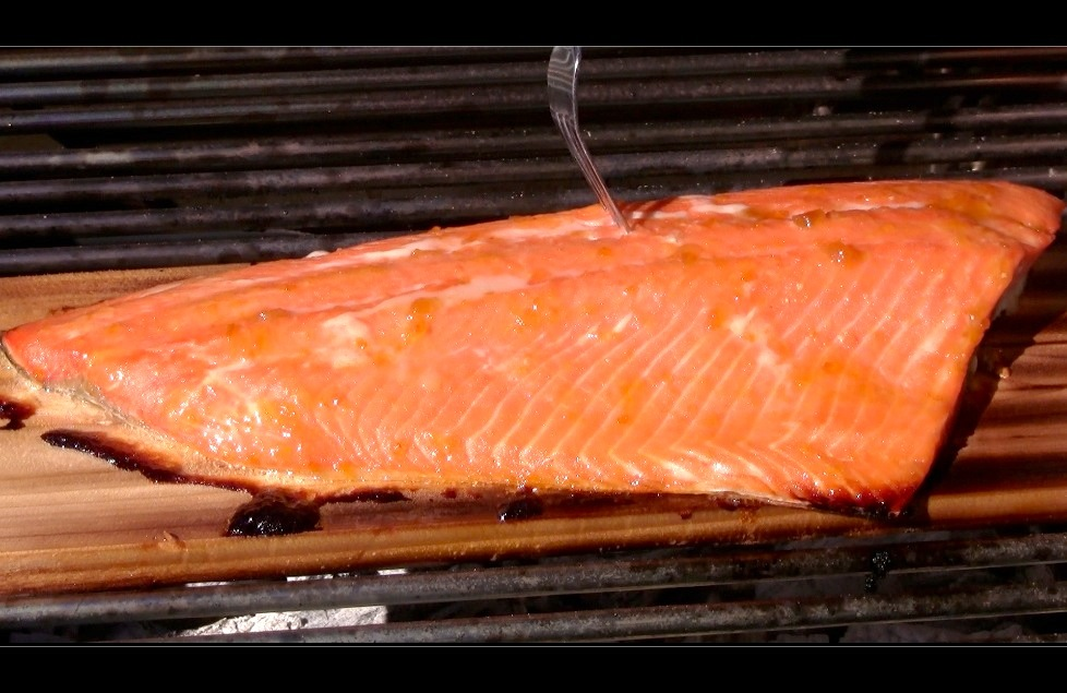 capture 16 Apricot Orange Glazed Cedar Plank Salmon Recipe