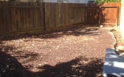 Goodbye Playground – Hello Organic Garden