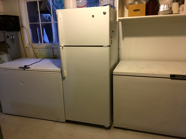Double freezers and a refrigerator | Cooking-Outdoors.com | Gary House