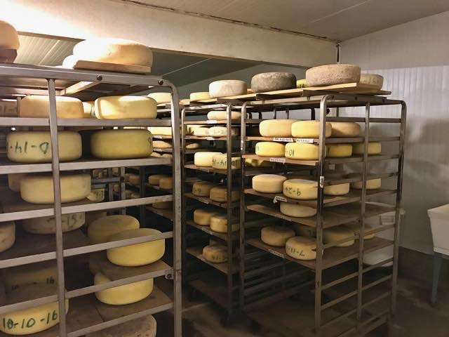 many-types-of-pedrozo-cheese | Traveling 4 Food | Gary House