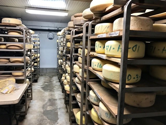 pedrozo-cheese-on-racks   Traveling 4 Food   Gary House